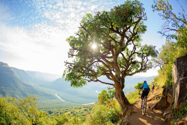 A guide to the Sani2c