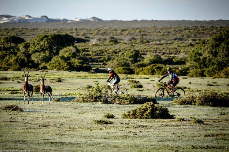 An outdoor exploration of some of the adventure opportunities in DE HOOP Nature Reserve in the Overstrand Region, near Bredasdorp, Western Cape, South Africa, RSA